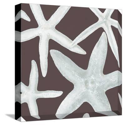 Starfish on Brown