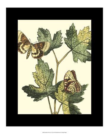 Butterflies & Leaves IV