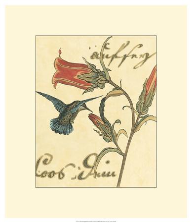Hummingbird Reverie III