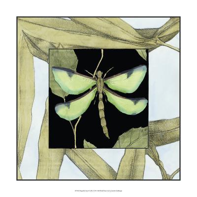Dragonfly Inset IV
