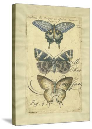 Butterfly Ephemera IV