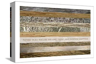 Nature's Wisdom (after Juvenal)