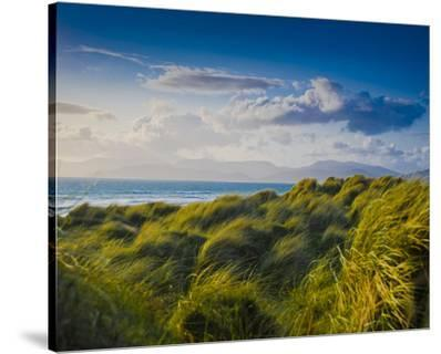 Ross Behy Sand Dunes, Ireland II