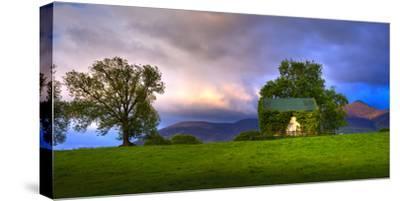 Vine Covered Cow Barn, Ireland