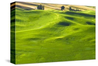 La Palouse Green