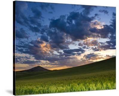 La Palouse Dawn near Steptoe