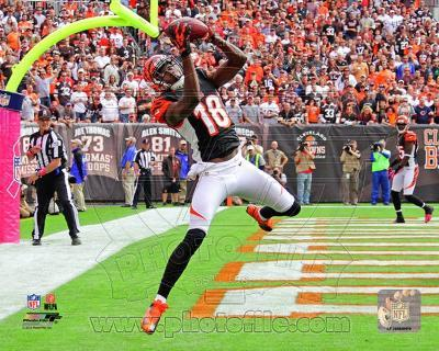 A.J. Green 2012 Action