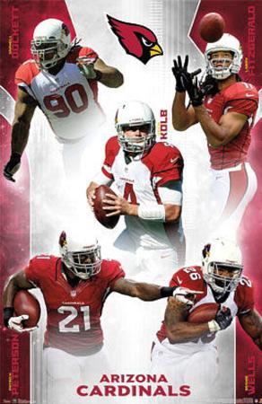 Arizona Cardinals 2012-13 Team