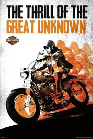Harley Davidson - The Thrill of the Great Unknown