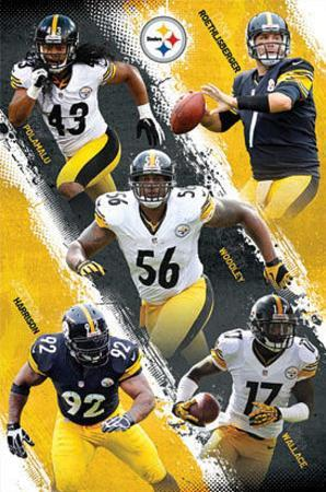 Pittsburgh Steelers 2012-13 Team