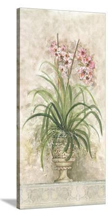 Orchid Revival ll