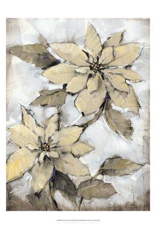 Poinsettia Study I