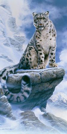 High Spirit - Snow Leopard