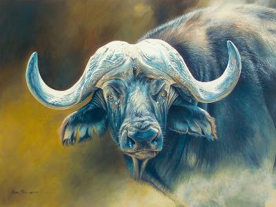 Warrior - African Cape Buffalo