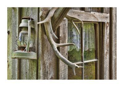 Antlers And Lantern