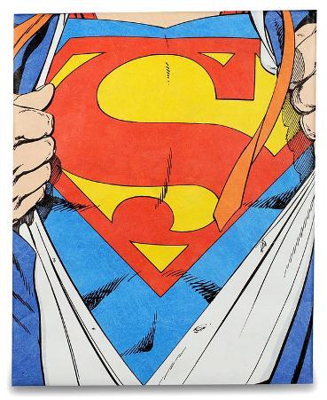 Superman Tyvek Mighty Case Tablet