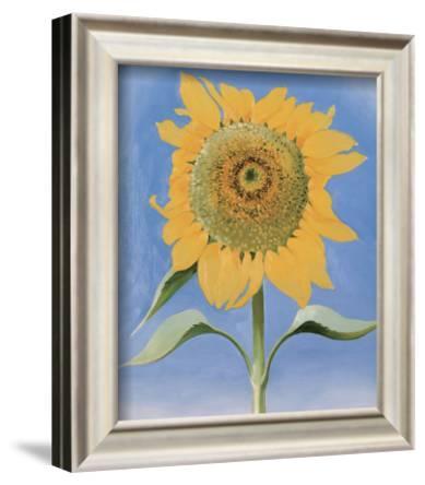 Sunflower, New Mexico, c.1935