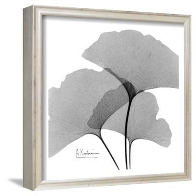 Ginkgo Leaves Trio Black and White