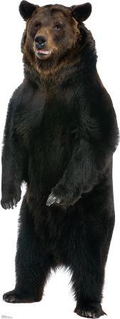 Brown Bear Lifesize Standup