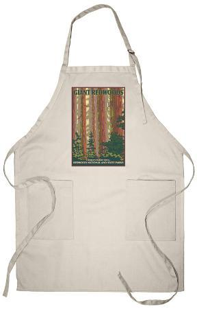 Giant Redwoods, Redwood National Park, California Apron