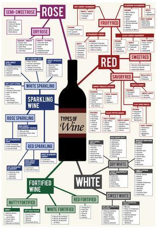 Types of Wine Chart
