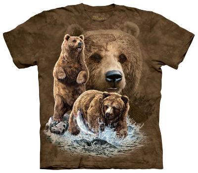 Find 10 Brown Bear
