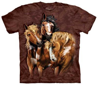 Find 8 Horses