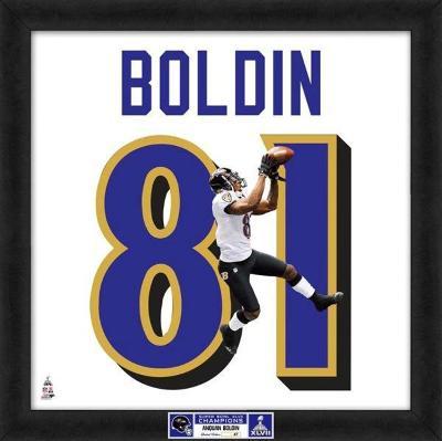 Super Bowl XLVII Champions - Ravens, Anquan Boldin representation of player's jersey