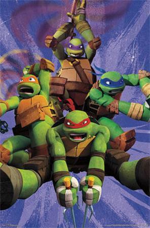 Teenage Mutant Ninja Turtles TMNT - Team