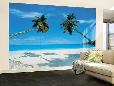 Shadow Palms Huge Wall Mural Poster Print