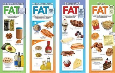 Types of Fat Educational Laminated Poster Set