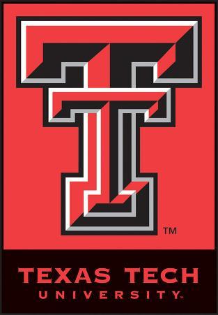 NCAA Texas Tech Red Raiders 2-Sided House Banner