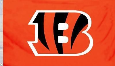 NFL Cincinnati Bengals Flag with Grommets