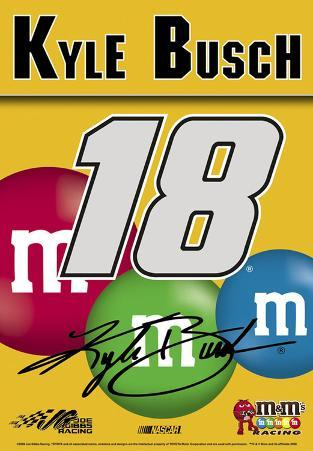 Nascar Kyle Busch #18 M& M'S 2-Sided House Banner