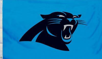 NFL Carolina Panthers Flag with Grommets