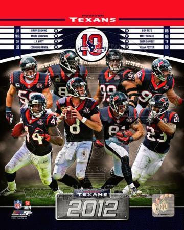 Houston Texans 2012 Team Composite