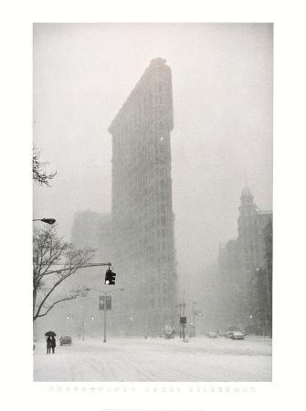 Flatiron Buzzard - New York