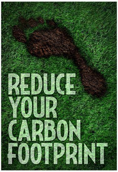 Reduce Your Carbon Footprint Motivational Poster Posters