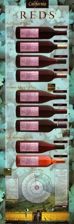 California Reds Educational Wine Poster