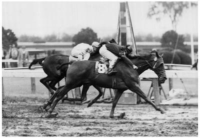 Vintage Horse Racing 1966 Archival Photo Poster