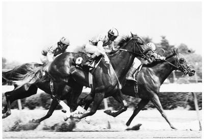 Rockingham Park Horse Racing 1976 Archival Photo Poster