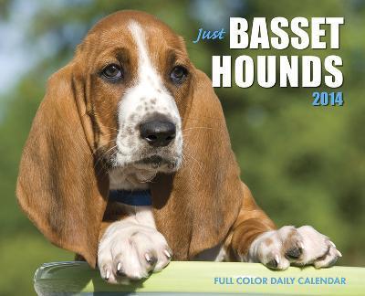 Just Basset Hounds - 2014 Box Calendar