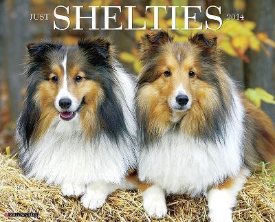 Shelties - 2014 16-Month Calendar
