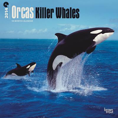 Orcas, Killer Whales - 2014 Calendar