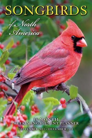 Songbirds of North America - 2014 Engagement Calendar