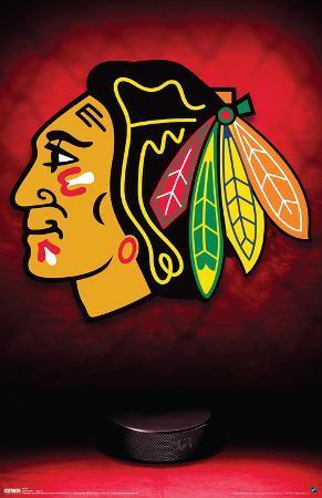 Chicago Blackhawks Logo Sports Poster