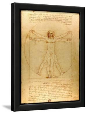 Leonardo Da Vinci (Vitruvian Man) Art Poster Print