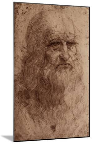 Leonardo Da Vinci (Self-Portrait) Art Poster Print