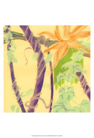 Jungle Monotype V