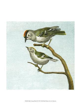 Mini Vintage Birds II